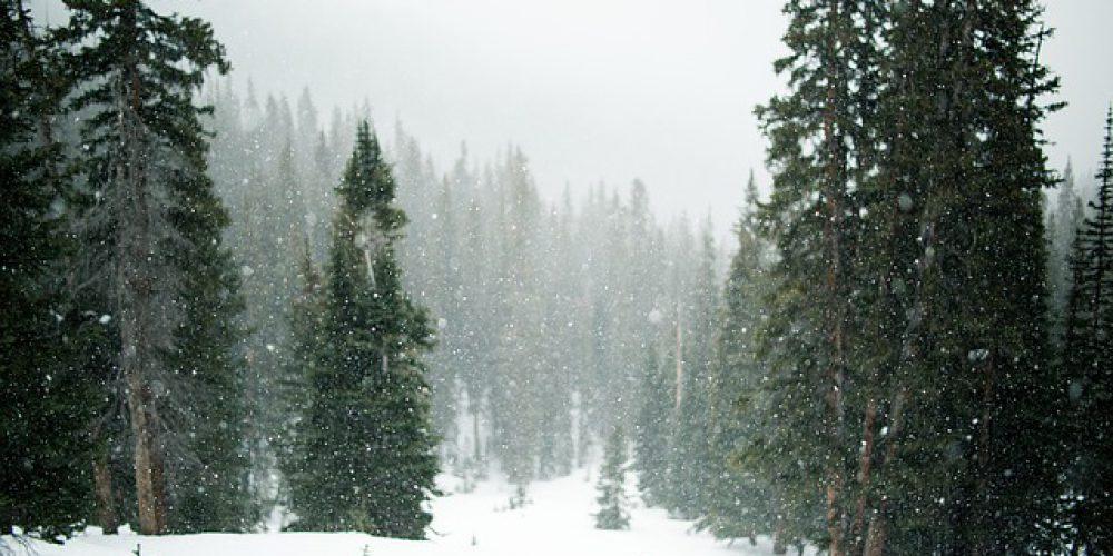 Soğuyan Havada Ne Zaman Ölüm Gerçekleşir?